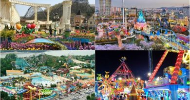 4 Best Amusement Parks In Korea